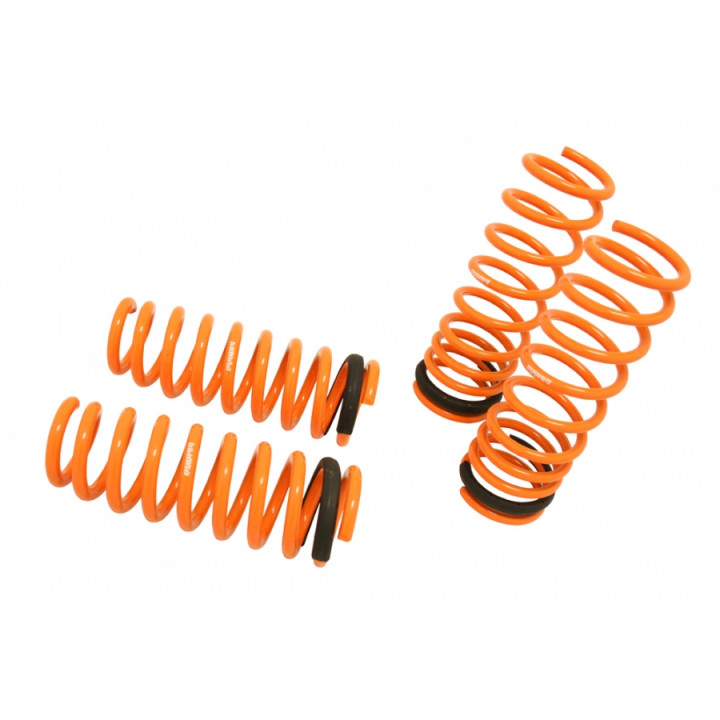 Megan Racing Lowering Springs